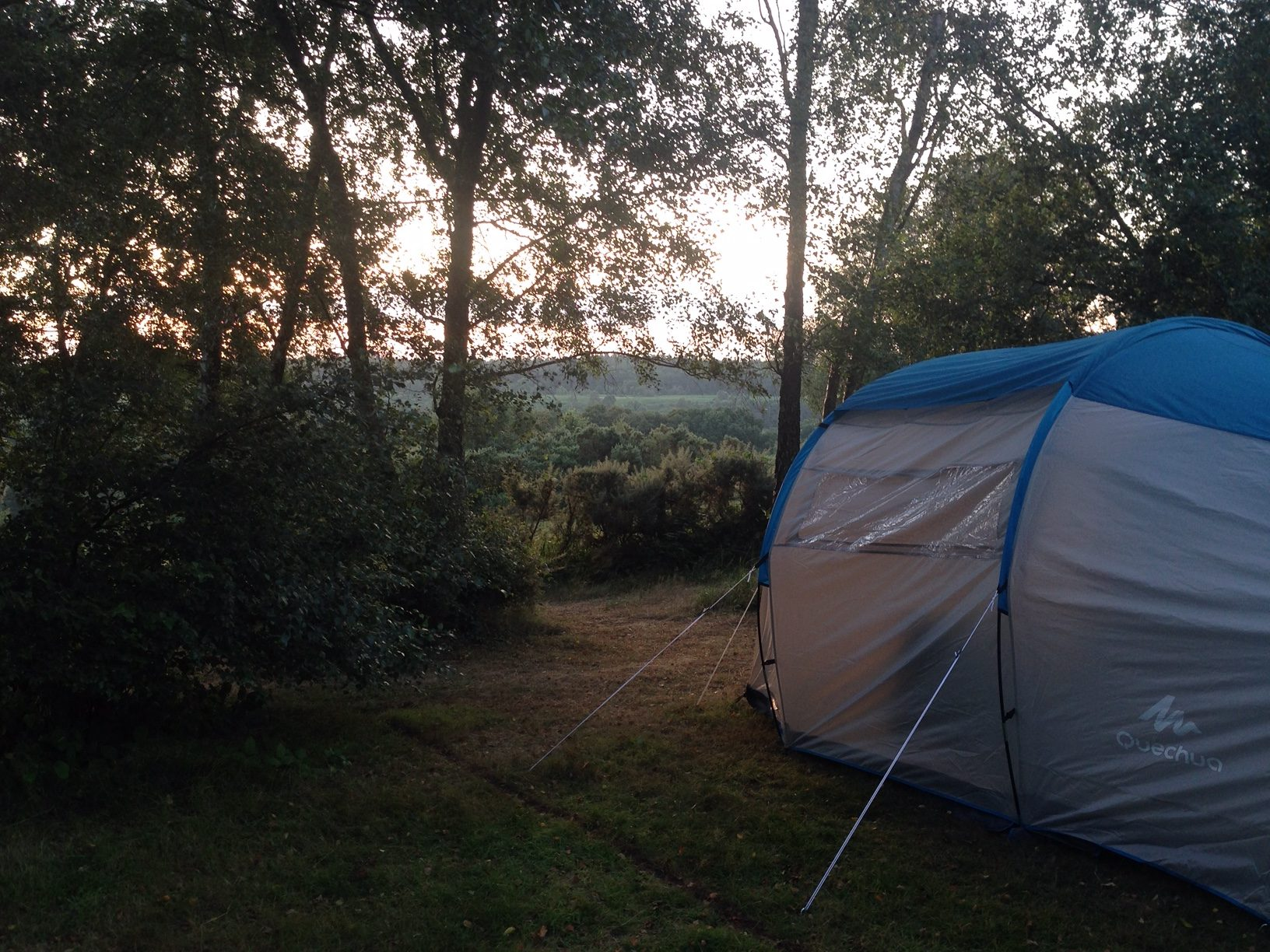 camping_tom's_field